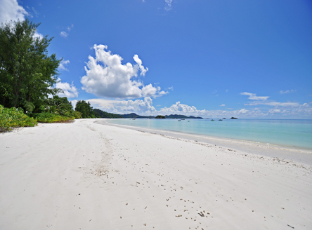 Cote d'Or Footprints,Seychelles