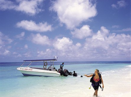 Diving and fishing excursions can be taken on your Denis Island holiday