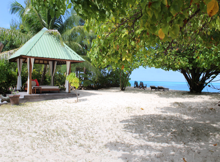 The grounds of your cottage on Denis Island Seychelles