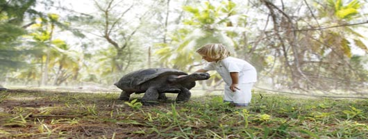 Unique family holidays on Desroches Island Seychelles