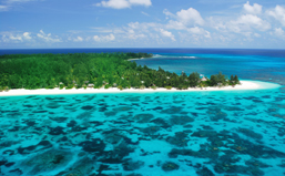 Denis Island Seychelles - Offer of the Month